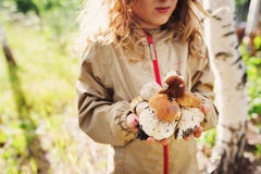 Happy child girl picking wild mushrooms on the walk in summer Stock Photography