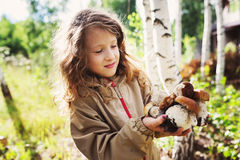 Happy child girl picking wild mushrooms on the walk in summer Stock Images