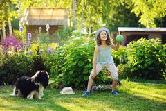 Happy child girl playing with her spaniel dog and throwing ball Stock Photos