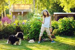 Happy child girl playing with her spaniel dog and throwing ball Stock Photo