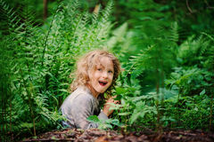Happy child girl playing and hiding in wild ferns in summer forest Stock Images