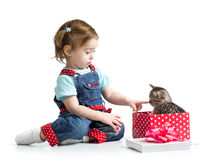 Happy child girl playing with kitten Stock Images