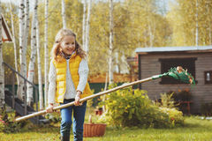Happy child girl playing little gardener in autumn and picking leaves into basket. Seasonal garden work Royalty Free Stock Image