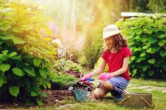 Happy child girl playing little gardener and helping in summer garden, wearing hat and gloves Stock Photos