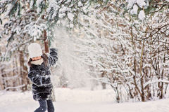 Happy child girl plays with snow on pine tree in winter forest Stock Photography