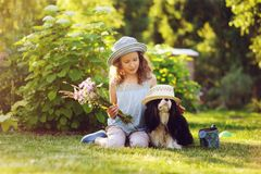 Happy child girl relaxing in summer garden with her spaniel dog. Wearing gardener hat and holding bouquet of flowers. Blooming perennials on background stock images