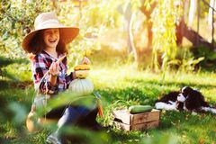 Happy child girl with spaniel dog playing little farmer in autumn garden and picking vegetable harvest. Growing fresh carrots, zucchini and pumpkins Royalty Free Stock Photo