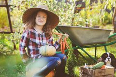 Happy child girl with spaniel dog playing little farmer in autumn garden. And picking vegetable harvest. Growing fresh carrots, zuccini and pumpkins Stock Photo