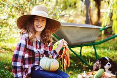 Happy child girl with spaniel dog playing little farmer in autumn garden and picking vegetable harvest. Growing fresh carrots, zucchini and pumpkins Stock Image