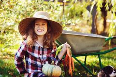 Happy child girl with spaniel dog playing little farmer in autumn garden and picking vegetable harvest. Growing fresh carrots, zuccini and pumpkins Royalty Free Stock Photo