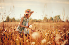 Happy child girl in straw playing with blow balls on summer field Stock Image