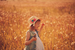 Happy child girl walking on summer meadow with dandelions. Rural country style scene, outdoor activities. Cozy lifestyle stock photography