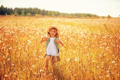 Happy child girl walking on summer meadow with dangelions. Rural country style scene, outdoor activities. Stock Images