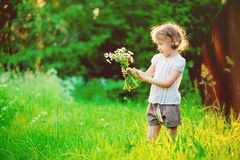 Happy child girl in white shirt on the walk on summer sunny field with bouquet Royalty Free Stock Photos