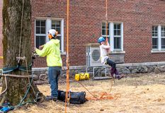 Happy child hanging from a rope harness. March 17, 2019 New Carlisle`s Bendix woods Indiana USA; a tree worker gives a little girl a ride in a safety harness royalty free stock photography