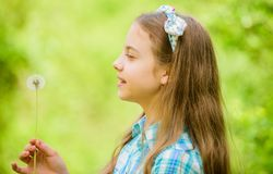 Happy child hold blowball. dandelion. Spring holiday. Womens day. little girl and with taraxacum flower. Natural beauty royalty free stock images