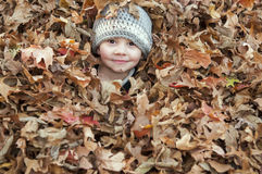 Boy in fall leaves Stock Image