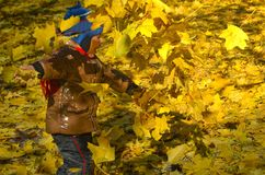 Happy child outdoors throws up autumn yellow leaves in the park stock photos
