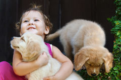Happy child play and hug family pet - labrador puppy. Funny photo of happy baby girl hug beautiful golden labrador retriever puppy, play together. Family royalty free stock photos