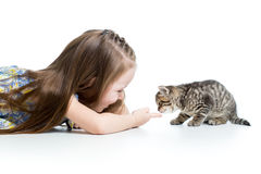 Happy child playing with kitten Royalty Free Stock Images