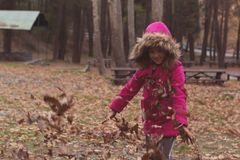 Happy Child Playing in the Leaves at Autumn Time stock photos