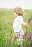 Child in spring field Stock Images