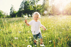 Happy child running on meadow of flowers. Happy little boy running on meadow of flowers with bouquet of wild daisies. Cute smiling child at camomile field at Royalty Free Stock Photography