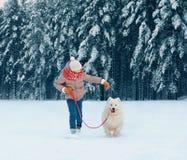 Happy child running with white Samoyed dog, playing on winter snowy stock photo