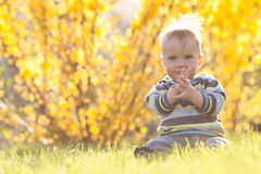 Happy child in sun back light Royalty Free Stock Photos