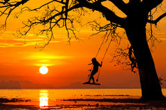 Happy child swinging at beautiful sunset on a tropical island. Stock Images