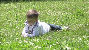Happy child with traditional clothes tumble in green grass, nature. 4K stock video footage