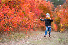 Happy child in warm clothes running through the forest Royalty Free Stock Photos