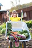 Happy child with a wheelbarrow filled vegetables Stock Image