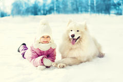 Happy child with white Samoyed dog lying on snow in winter Royalty Free Stock Photo