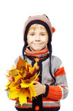 Happy child in woolen clothes holding maple leaves Royalty Free Stock Image