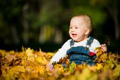 Happy childhood - autumn sunny day Stock Images