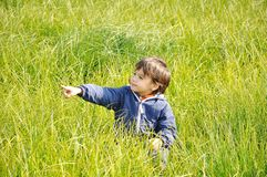 Happy childhood on a  beautiful meadow Stock Image