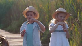 Happy childhood, cute child boy and girl blow bubbles in nature in sunny light. Happy childhood, cute child boy and girl in straw hats blow bubbles in nature in stock video