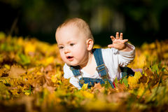 Happy childhood - fall sunny day Royalty Free Stock Photography