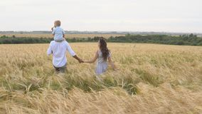 Happy childhood, family walking on the wheat field stock video footage