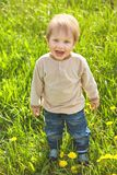 Happy childhood outdoor, little blond boy in green grass stock image