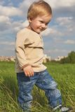 Happy childhood outdoor, little blond boy in green grass stock photo