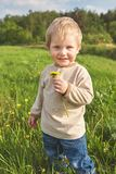 Happy childhood outside, little blond boy in green grass with dandelion in hand royalty free stock image