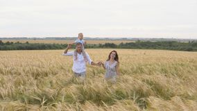 Happy childhood, family together on wheat field stock footage
