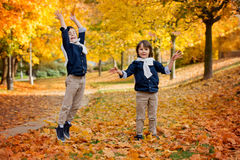 Happy children, boy brothers, playing in the park, throwing leav. Es, playing with fallen leaves in autumn Stock Photos