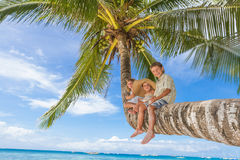Happy children - boy and girls - on palm tree, tropical Royalty Free Stock Photography