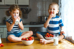 Happy children brother and sister eating strawberries with milk Royalty Free Stock Photography