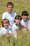 Happy children in corn field Stock Photo