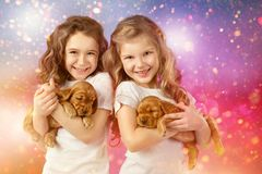 Happy children and dogs on Christmas eve. New year 2018. Holiday concept, Christmas, New year background. Happy children and dogs on Christmas eve. Kids playing Stock Images