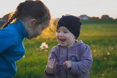 Happy children on the filed royalty free stock photography